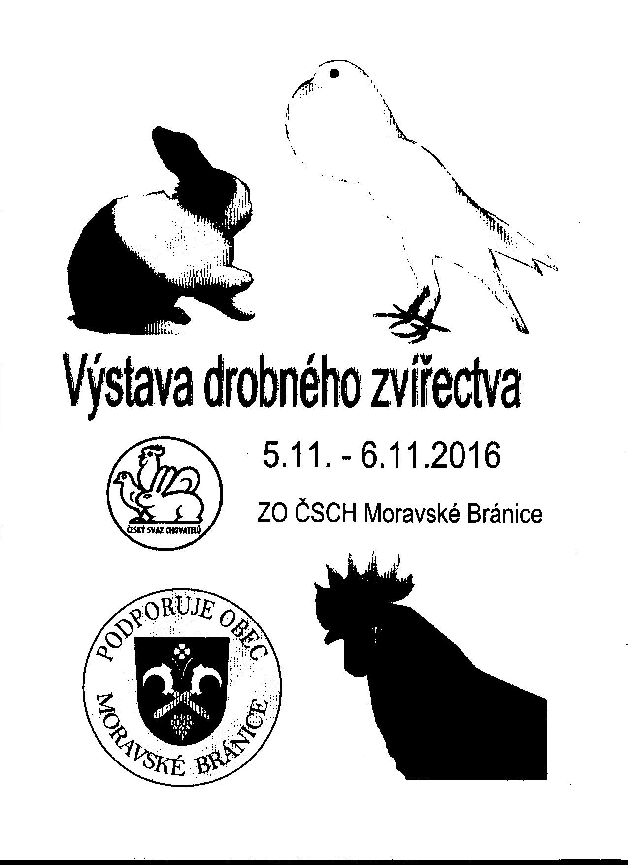 Pujcky online ihned na úcet uhlířské janovice image 6